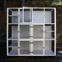 Guinea Pig Toys, Guinea Pig Care, Cat Enclosure, Reptile Enclosure, Animal Cage, Cat Kennel, Cat Cages, Cat Shelves, Cat Condo