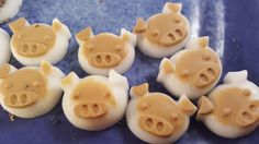 Coconut Oil Treats for Mini Pigs Coconut oil is a healthy and delicious