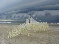 one of Theo Jansen's Strandbeest. powered by the wind.