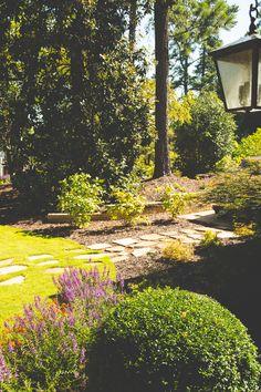 Beautiful landscape planting