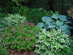 Blog — Enchanted Gardens
