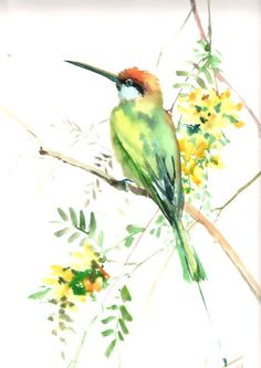 Green Bee Eater Original watercolor painting 18 X by ORIGINALONLY, $63.00