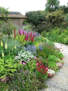 Nice border - chives, aguga, lupine, balsam, hosta, astilbe. red erigeron(?), zonal geraniums, ferns, grasses, bachelors buttons, phlox, blue campanula(?)