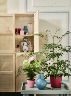 Ikea's latest collection is about getting the basics in your home right | IMAGE.ie Ikea Inspiration, Ikea Sortiment, Ivar Ikea Hack, Ikea Hacks, Ikea Portugal, Bamboo Weaving, Decoration Plante, Ikea Family, Living Room Trends