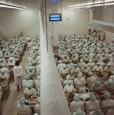 Yto Barrada, Factory 1, Prawn processing plant in the Free Trade Zone, Tangier, 1998