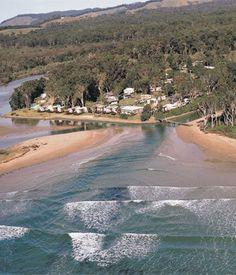 Arrawarra near Woolgoolga NSW