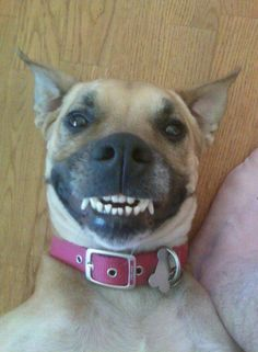 What a beautiful smile!