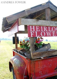 cool Farmfresh Bouquets: Social Experiment to Sell Flowers on a Trailer by the Side of the Road #Flower #Pots What do you think of this beautiful concept of selling your garden flowers ? ++ Keepingitcozy...