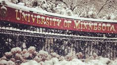 Located near the heart of Minneapolis, University of Minnesota students are no strangers to bitter cold and snowy winters. The Golden Gophers get about 55.5 inches of snow every year.
