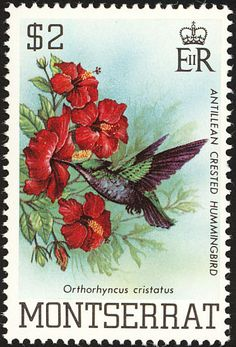 Antillean Crested Hummingbird stamps - mainly images - gallery format