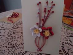 Simple Red & White Flowers - by: Стела Николова-Bulgaria