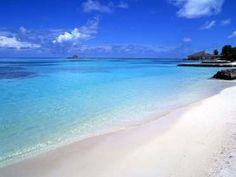 playas de punta cana - Buscar con Google
