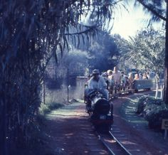 The train at centenary park! I loved this! Zimbabwe, Continents, Daydream, Childhood Memories, The Good Place, The Past, Scenery, Africa, Park