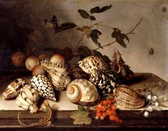 Balthasar van der Ast (1593/94-1657) — Still Life with Fruit and Seashells  :  Gemäldegalerie Alte Meister (Old Masters Picture Gallery), Dresden. Germany  (702x550)