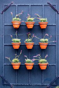 Lattice wall planter