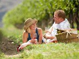 Combine artistic pursuits and outdoor adventure with wine tours or visit a museum or gallery.  #kelowna #whattodotoday