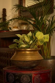 This brass planter adds warmth and elegance to any decor. | Home Tour: A beautiful Antique Modern home in Bangalore ~ The Keybunch Decor Blog Makes You Beautiful, Beautiful Homes, Brick Cladding, Vintage Trunks, Tanjore Painting, Brass Planter, Stone Flooring, Decorating Blogs, House Tours