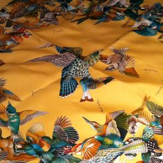 Hermes scarf...birds from?