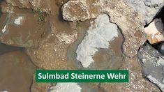 Erfrischende Abkühlung im ältesten Flussbad der Steiermark. Scenery, Water Tower, Swimming