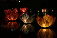 floating lanterns are perfect for the reflecting light energy of MOON #aclearplace