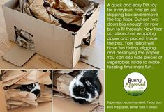 #DIY toy for bunnies