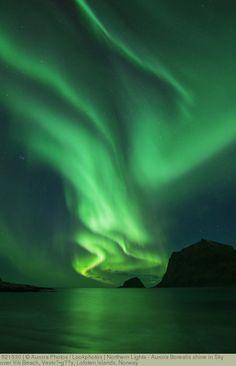 Northern Lights - Aurora Borealis shine in Sky over Vik Beach, Vestv?•g??y, Lofoten Islands, Norway
