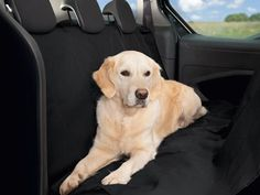 Premium Dog Cat Car Minivan SUV Seat Cover Waterproof Pet Hammock Protector Mat * Want additional info? Click on the image. (This is an affiliate link and I receive a commission for the sales)