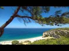 www.cruisejournal.de #Cruise #Kreuzfahrt #AIDA Hafen: Samos