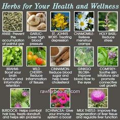Herbs for your health and wellness #herbs #alternative #health  www.nutritioncentre.co.uk