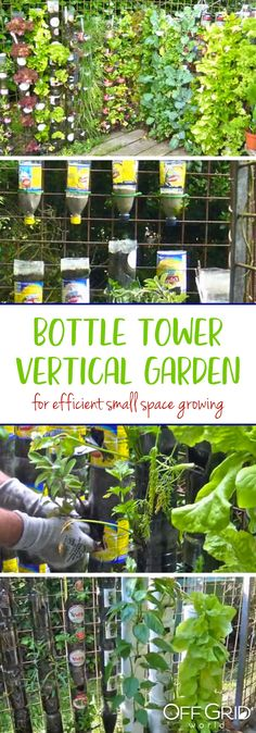 TOWER GARDENING... FUN, NUTRITIONAL AND DELICIOUS | Veggies, Tower ...