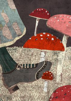 Mushrooms by Eszter Schall Budakeszi,   Hungary -  I love the texture and colour combination.