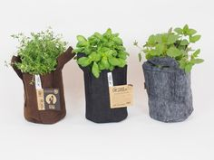 Root Pouch ''3,8L''. Schicke Pflanztasche aus recycelten Naturfasern. Recconect with nature! #Selbstversorger