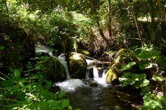 Alto Molise, river Verrino