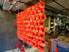 Remembrance Day 2015 Window Display