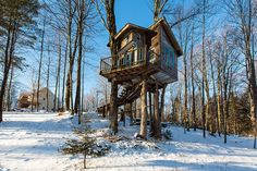 The Tiny Fern Forest Treehouse - Lincoln, VT