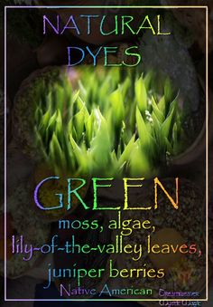 GREEN - moss, algae, lily-of-the-valley leaves, juniper berries