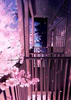 Sakura Flower From The Balcony Pink Blossom Tree, Cherry Blossom Wallpaper, Flower Wallpaper, Anime Backgrounds Wallpapers, Anime Scenery Wallpaper, Pretty Wallpapers, Aesthetic Backgrounds, Aesthetic Wallpapers, Katsura Kotonoha