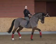 Isabell Werth shared a fun video of her riding her 19-year old retired super star Satchmo without saddle or bridle!
