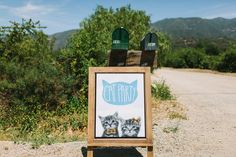 Ojai Cat Themed Wedding: If we were actually doing it this is how it should be done!