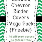 Editable binder covers to keep your classroom tidy and organized! Perfect for organizing common core resources by standard!  Please consider follow...