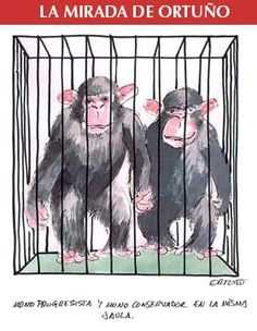Ortuño; mono progre, mono conservador