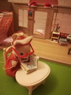 Cat mom reads a book