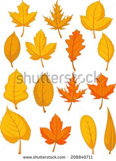 Autumn ilustracji stockowych i animacji | Shutterstock