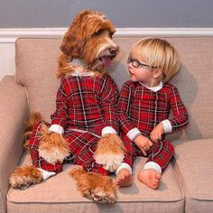 Dog Clothes - Free Expert Consultancy On The Topic Of Dogs Dogs And Kids, Animals For Kids, Cute Baby Animals, I Love Dogs, Funny Animals, Animals Dog, Wild Animals, So Cute Baby, Cute Kids