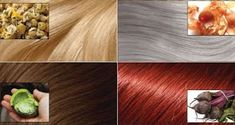 How To Color Your Hair Naturally, Without Chemicals Natural Hair Styles, Short Hair Styles, Covering Gray Hair, Hair Secrets, Henna Hair, Fall Hair Colors, Color Your Hair, Hair Scalp, Light Brown Hair