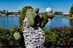 Snow White & The Seven Dwarfs Topiary