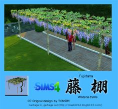 Download Information < Sims4 Custom Object > Wisteria trellis 藤棚   【Wisteria trellis】Download Page