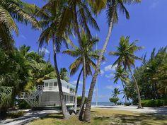 Beached Houseboat in The Florida Keys: Backyard
