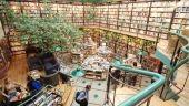 Cafebrería El Péndulo, Mexico (Mexique). Comme son nom l'indique, ce lieu fait à la fois office de café-restaurant et de librairie dans un espace lumineux et décoré de plantes vertes. Depuis sa création en 1993, il a étoffé son offre, proposant des concerts et des cours de littérature. Centre culturel à part entière, il compte désormais six succursales à Mexico. - Les 10 librairies les plus atypiques du monde.