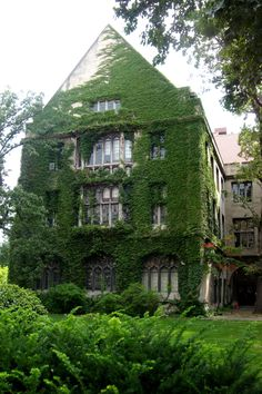 University of Chicago - oh how I loved my time there. It truly is a dream.